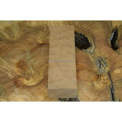 Sapelli Pamela Ağacı (Afrika Maun) 3